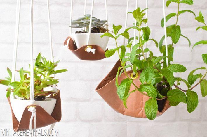 suporti plante